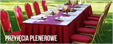 Imprezy plenerowe, przyjęcia plenerowe